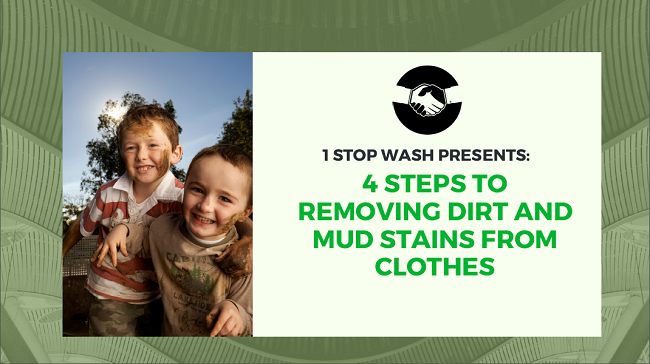 Remove dust and mud stains